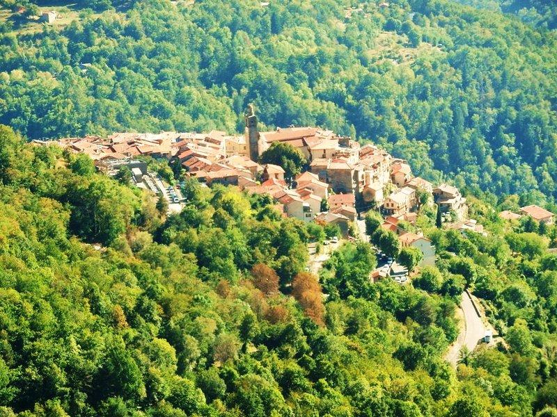 Gîte 4 Saisons : Chez Isa . Meublé 2 **, location de vacances à Alpes Maritimes