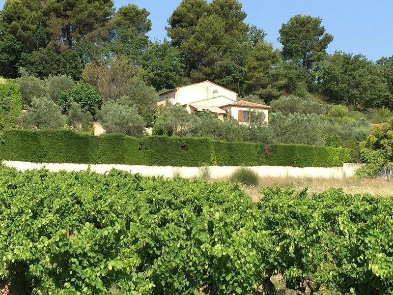 villa de charme avec piscine chauffée dans un environnement arboré et fleuri, holiday rental in Villedieu