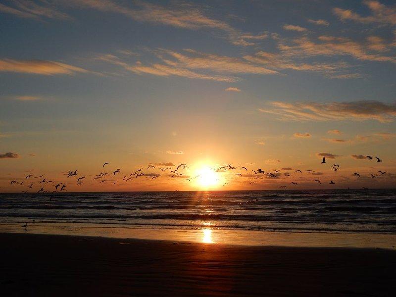 Lever de soleil sur la plage! Beauté à couper le souffle. À quelques pas de votre porte.