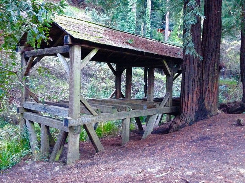Old Mill Park in Mill Valley just 1.2 miles away