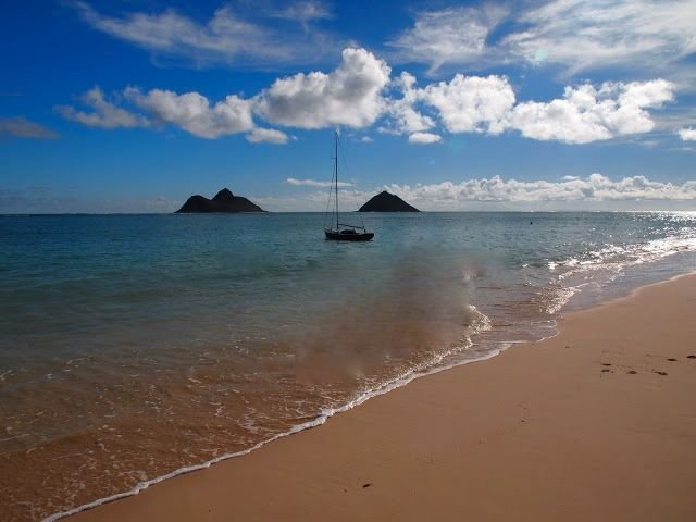 Uluhale: House of the Breadfruit Tree: Steps to Lanikai Beach, vacation rental in Kailua