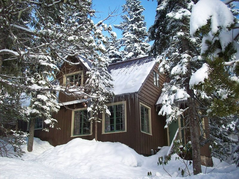Heart of village!  Stone fireplace, knotty pine interior, a real cabin!, holiday rental in Government Camp