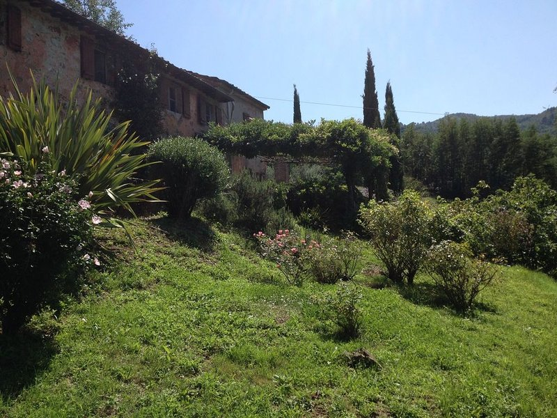 Tuscan Oasis near Lucca with large pool, holiday rental in Borgo a Mozzano