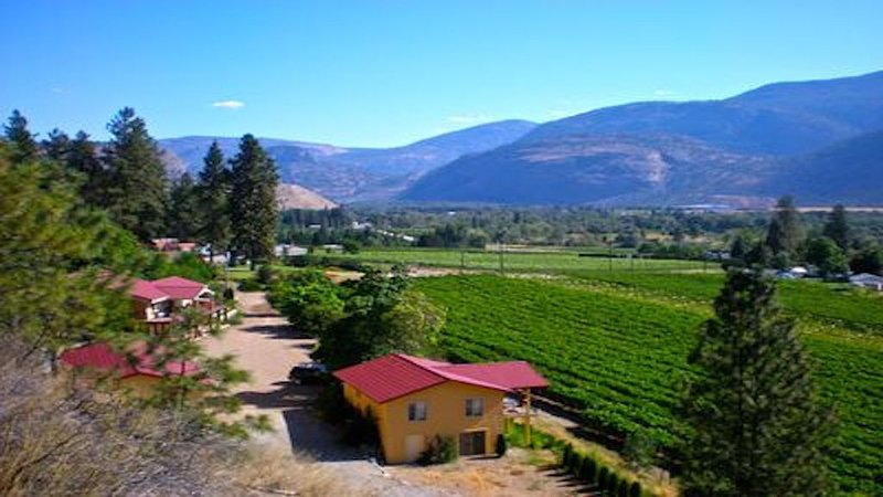 exclusive, 1 BR guest house overlooking vineyard, holiday rental in Okanagan Falls