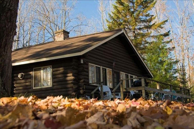 Cozy Log Cabin Rental, holiday rental in Baraga
