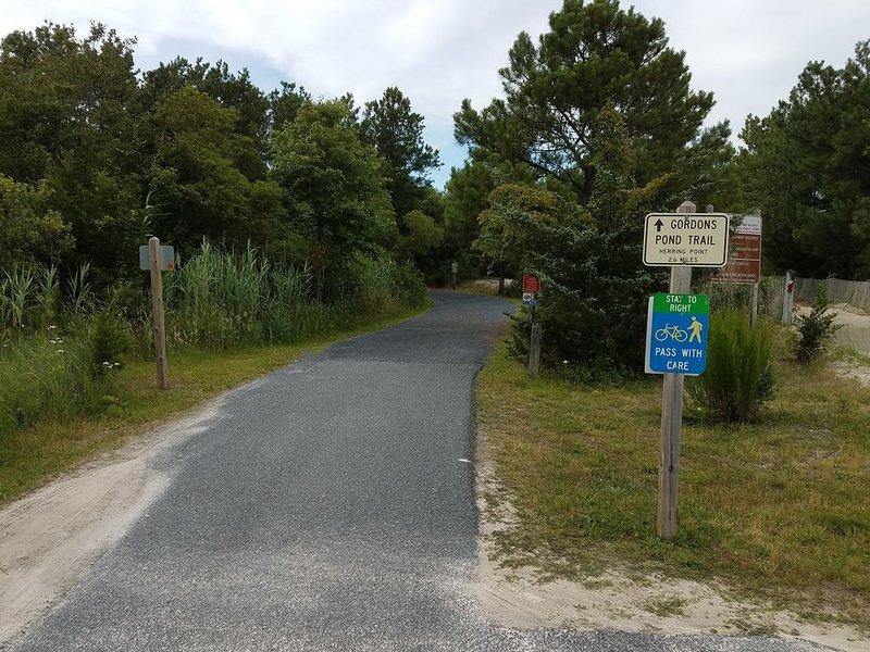 Rutas de bicicleta Gordon Pond y Breakwater Junction cerca