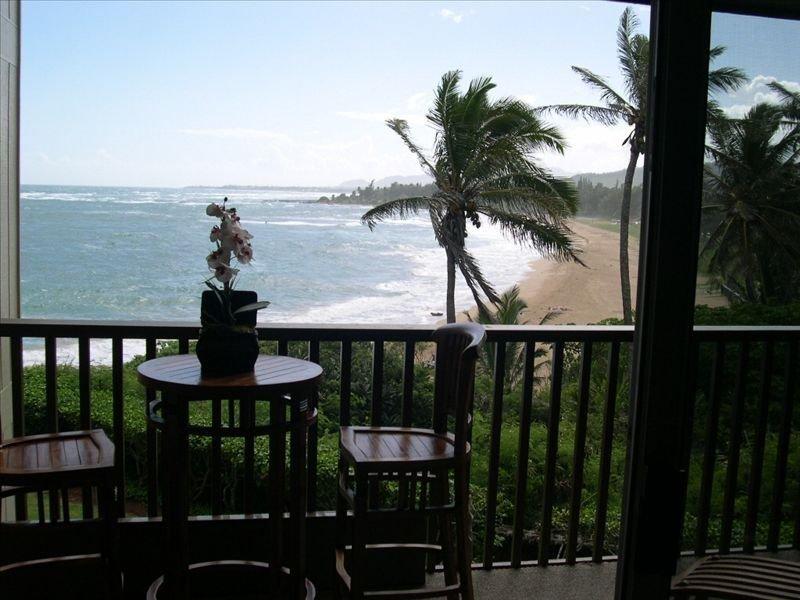 Great Ocean Front Condo for Your $$. Ranked A++ by Travel Guide!, alquiler de vacaciones en Kapaa