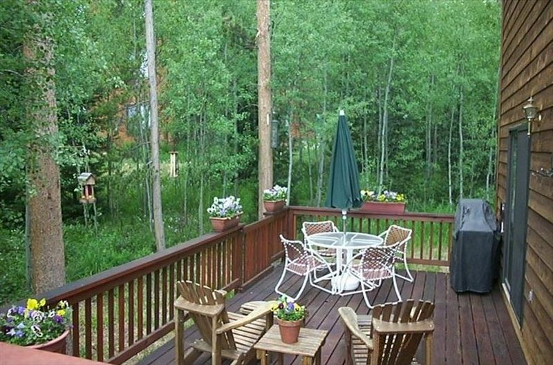 Burgundy Chalet -- Private Mountain Getaway!   BCA - 48176, holiday rental in Silverthorne