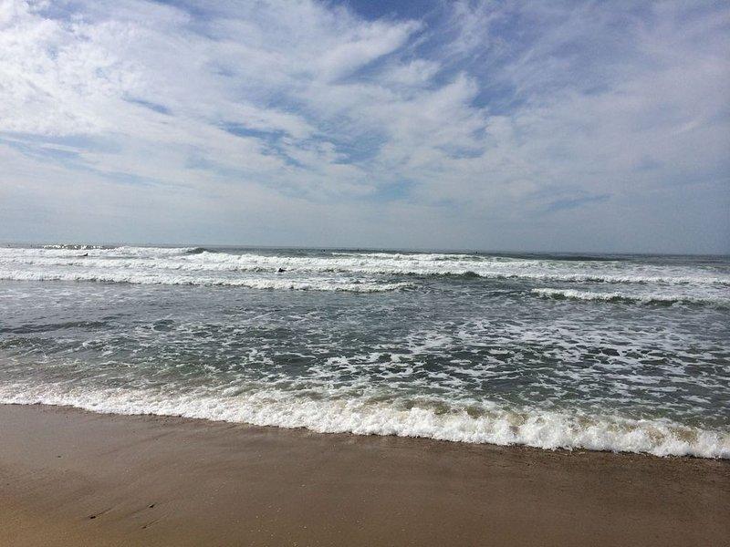 Ditch Plains Beach Cottage- Walk to Beach, location de vacances à Montauk