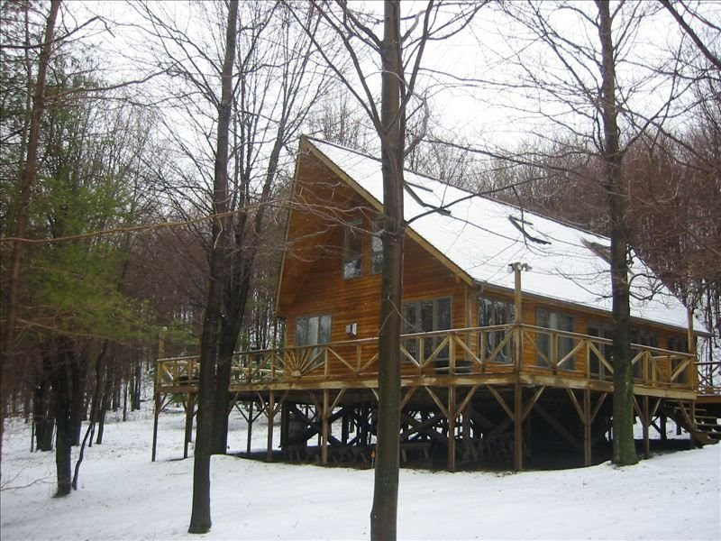 Mountain Chalet Cabin w/campfire, hiking trails, mountain views, 70 wooded acres, holiday rental in Davenport Center