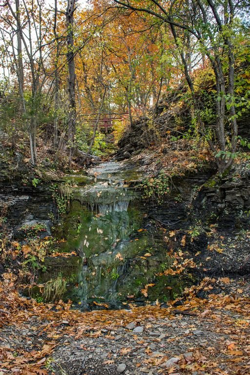 There is a small creek and waterfall that runs along the property line