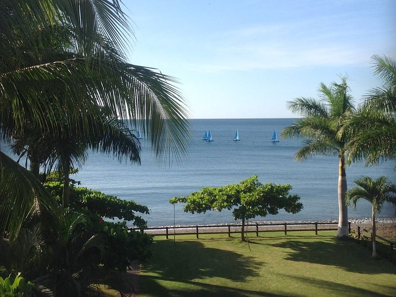 Sailboats from the nearby sailing center from our terrace