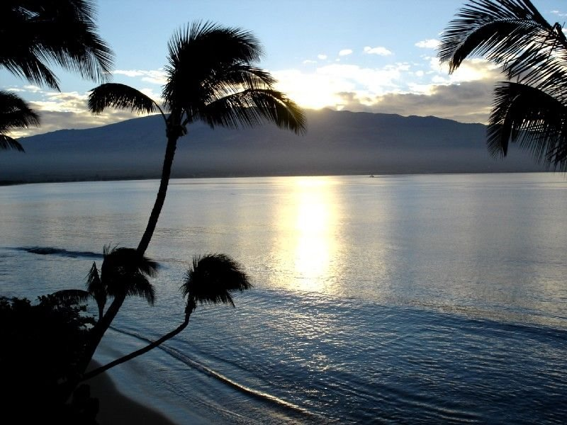 Top Floor Oceanfront 2 Bdr/2 Ba - Beautiful & Affordable!, alquiler vacacional en Wailuku