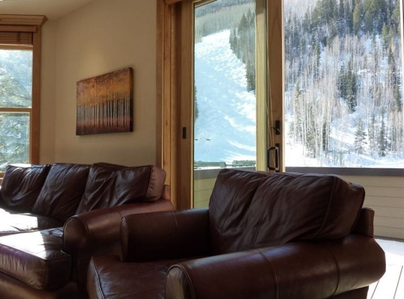 Ski-in/Ski-Out 5 Bedroom in the town of Telluride, Ferienwohnung in Telluride