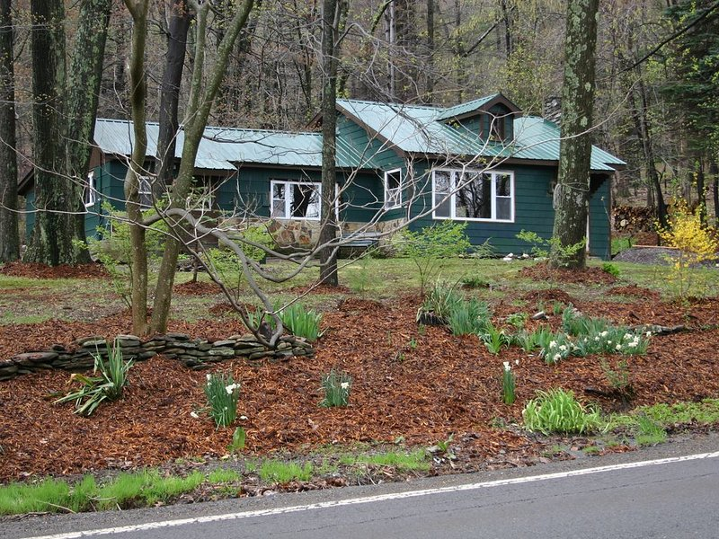 Cozy cabin - Minutes From Ricketts Glen State Park, holiday rental in Benton