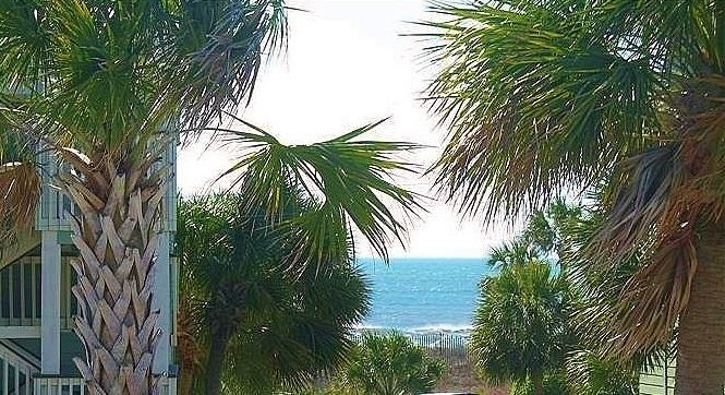 SUN,  SAND AND SEA..., holiday rental in Isle of Palms