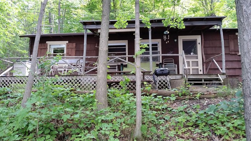 A Wonderful Rustic Cottage on Skaneateles Lake, holiday rental in Ridgemont