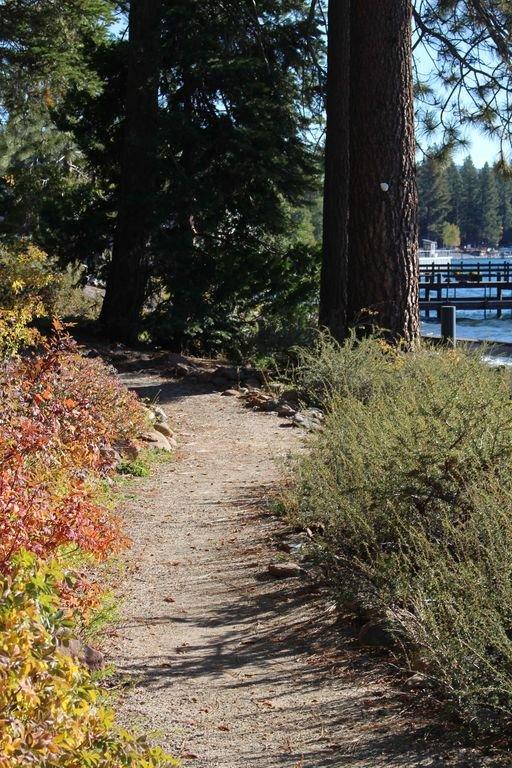 Camino publico a lo largo del lago
