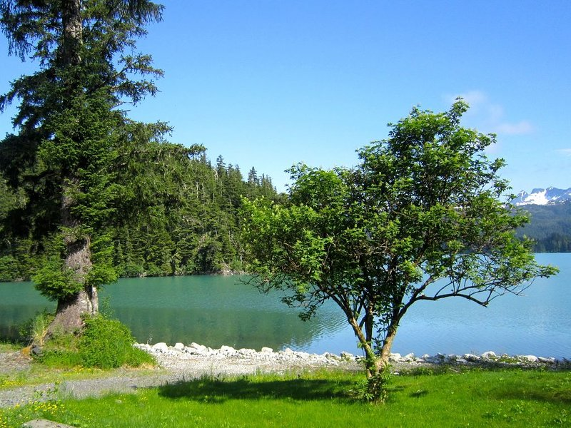 Bear Country Lodge #2, holiday rental in Cordova