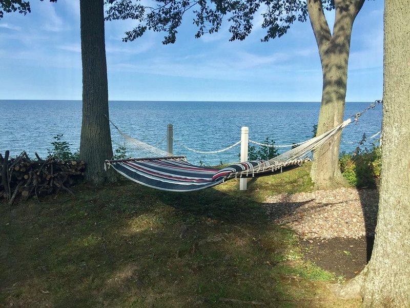 The view from your hammock