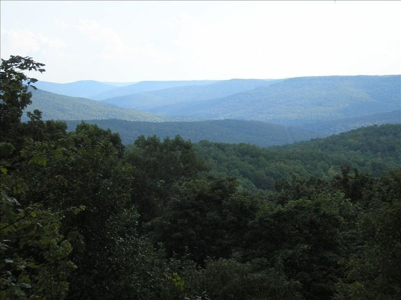 On the mountain, 4 miles from Sewanee!, holiday rental in Belvidere