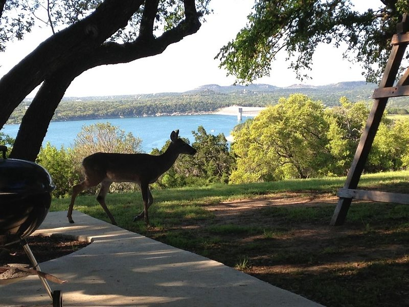 The wildlife is awesome and the lake is beautiful from our patio.