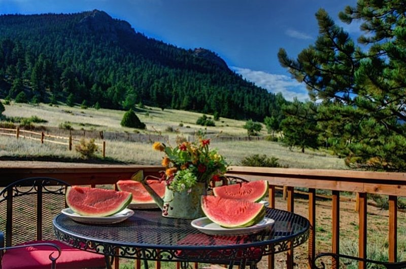 Huge Views, 15 Acre Private Estate, Wildlife, Multi-Family Cottage Near RMNP, vacation rental in Estes Park
