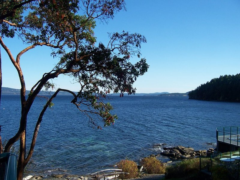 Beautiful Oceanfront Corner Unit with Spectacular View!, holiday rental in Cowichan Valley Regional District