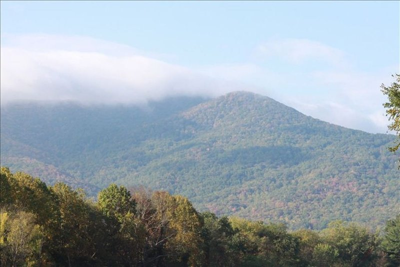 Helen's Place  in  Black Mountain ~NC~, vacation rental in Black Mountain