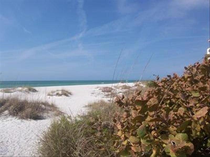 Swim up Tiki Bar !  New Anna Maria Island Cottage!!, vacation rental in Holmes Beach