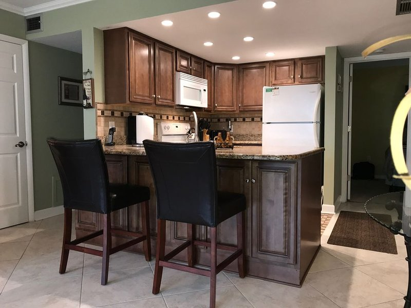 Ground Floor - Delightful and Totally Divine - Free Netflix, WI-FI, Chromcast, holiday rental in Sarasota