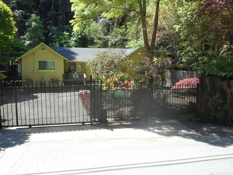 A Whimsical Retreat Amongst the Redwoods, holiday rental in Duncans Mills