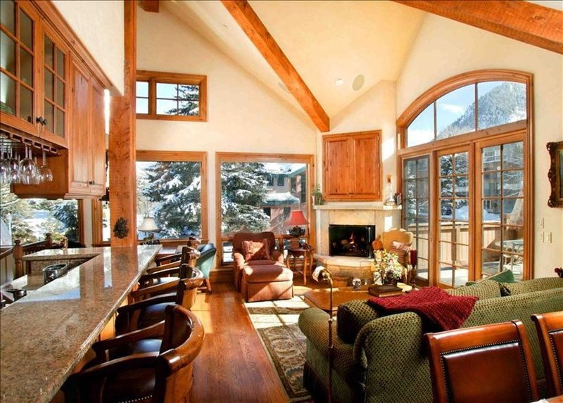 Penthouse W/ Dynamite Views - #417  Walk to Lifts & Downtown, holiday rental in Aspen