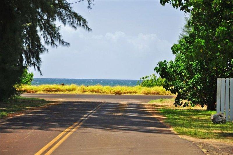 Walk to Ocean..Privacy.. Plantation Cottage ...Very Private  -  TVNCU #1292, location de vacances à Kekaha