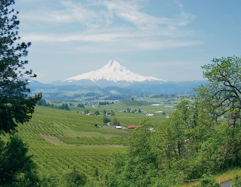 Large Country Lodge with Beautiful Views, vacation rental in Hood River