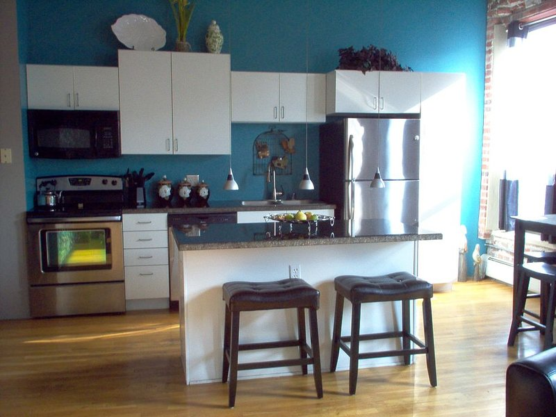 EXCEPTIONAL-AFFORDABLE DOWNTOWN DENVER LOFT!, holiday rental in Denver