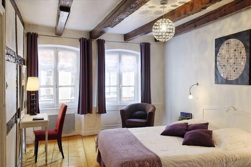 Heart of Strasbourg-Great Apartment in Petite France, alquiler vacacional en Estrasburgo