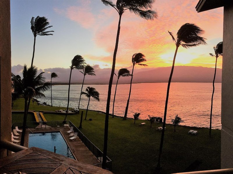 Oceanfront Penthouse  Suite~Perfect location & turtles! Enjoy Paradise! ��, holiday rental in Maalaea