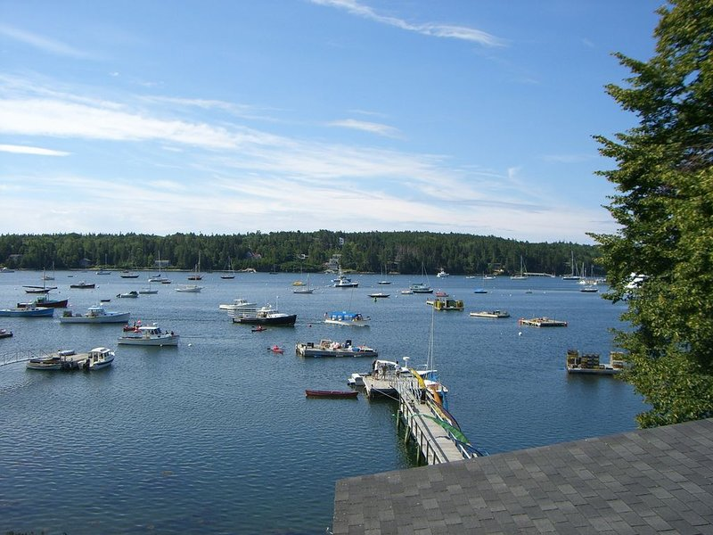 Walk to Town! Beautiful Waterfront Cottage w/ Panoramic Views from Deck and Dock, vacation rental in Seal Harbor