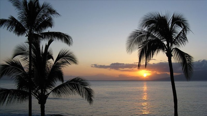 ** Maui Budget Condo with Oceanfront Luxury at Papakea, vacation rental in Lahaina
