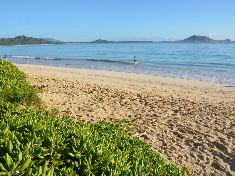 Steps to the Beach Guesthouse, vacation rental in Kailua