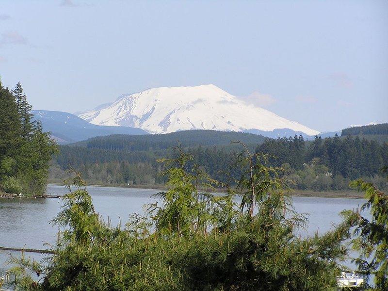 Image du mont. St. Helens 28 ans après l'éruption, rivage de Silverlake.