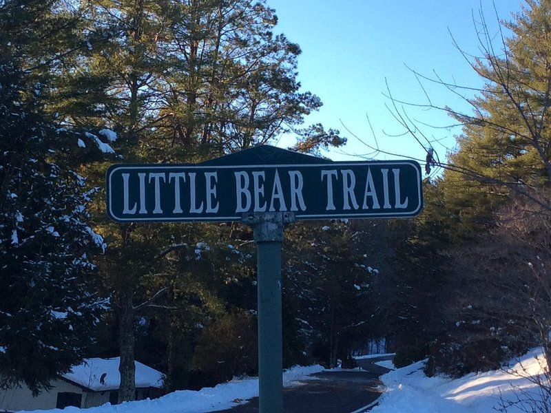 Welcome to 32 Little Bear Trail