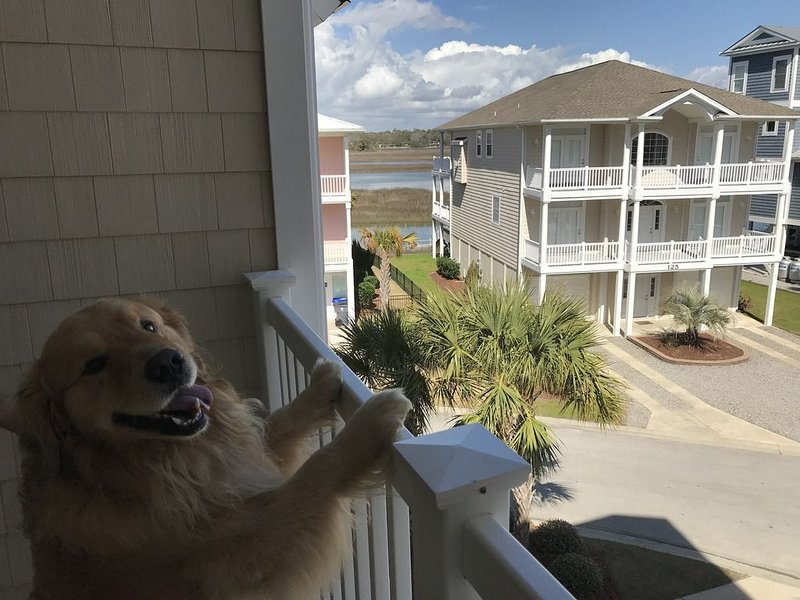 Lovely 4 Bed/4 Bath Pet-Friendly Villa, short walk to beach w/ beautiful views., vacation rental in Ocean Isle Beach