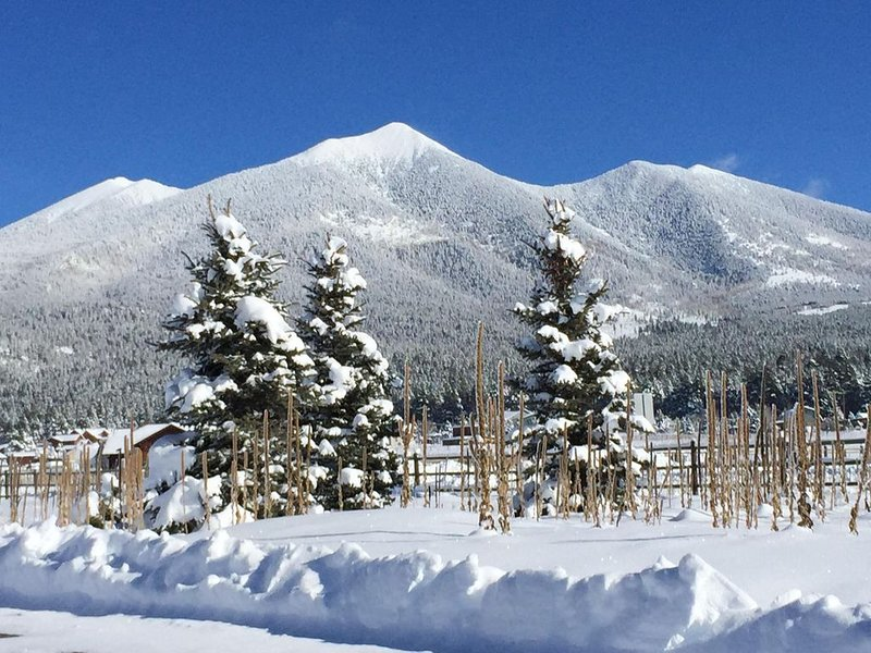 Regroup, Relax and Unwind at the Base of Snowbowl, vacation rental in Flagstaff