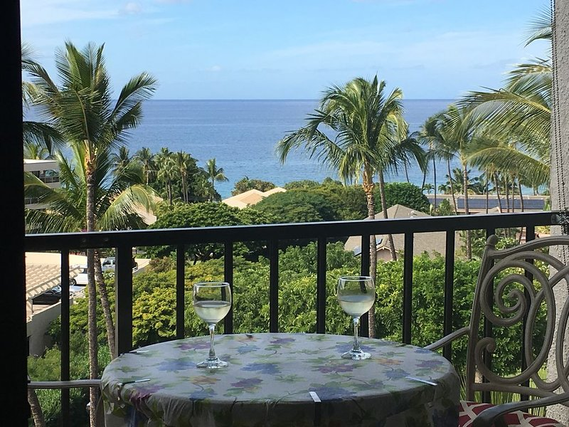 Top floor: D614 Spectacular view - Owner managed- FLEXIBLE  POLICIES, vacation rental in Haleakala National Park