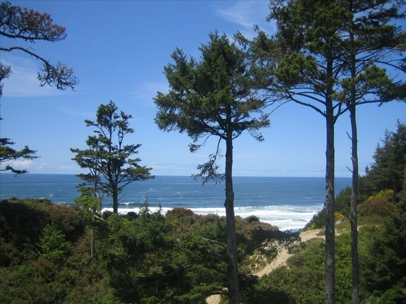 Huge Ocean View with Semi-Private Beach Access, vacation rental in Pacific City