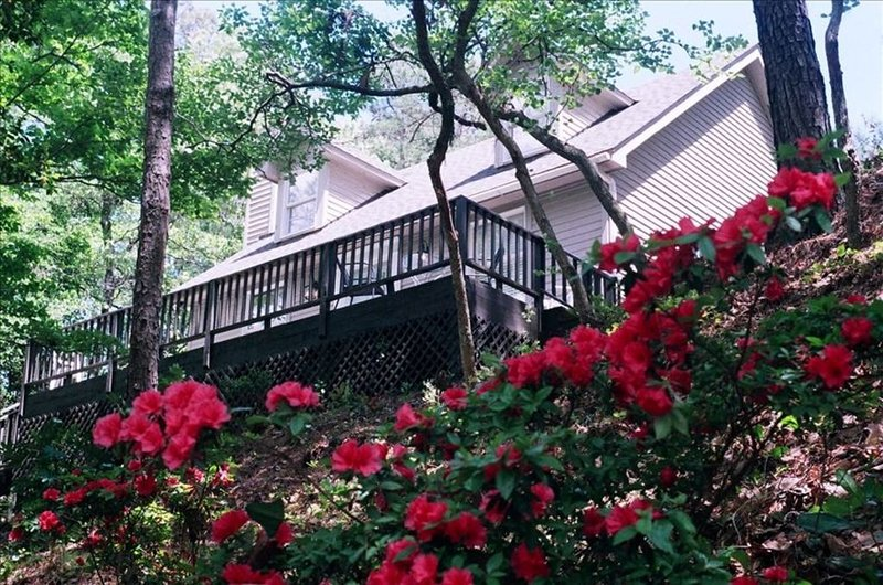 Charming 3 BR Cottage on Top of a Hill, Private Walk to Roanoke Sound, aluguéis de temporada em Roanoke Island