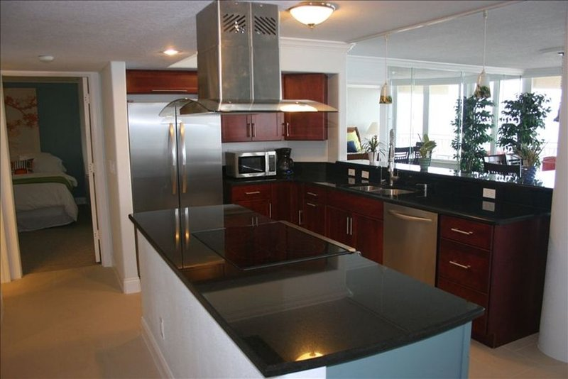 Beautifully decorated, 3bed / 3BA - 5th Floor, Direct Ocean Front, vacation rental in Ponce Inlet