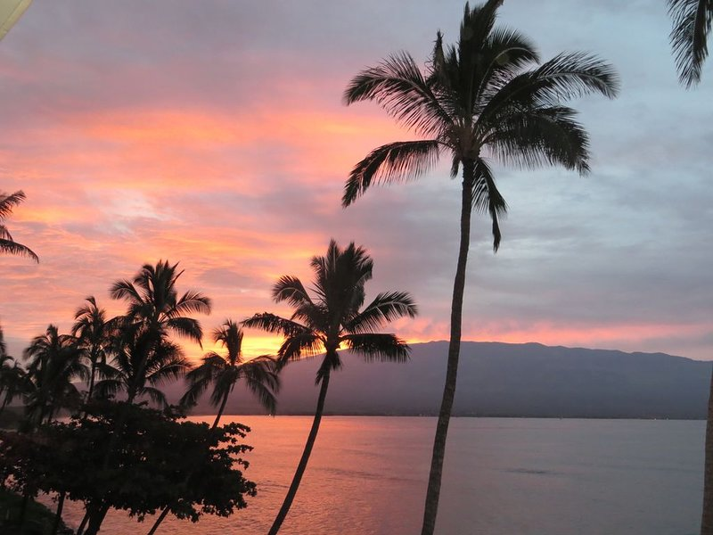 OceanFront Condo! 2 BDR / 2 BA Affordable Indulgence!, Ferienwohnung in Wailuku